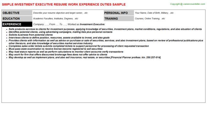 Investment Executive Resume Template