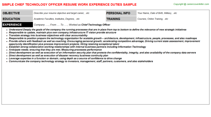 Chief Technology Officer Resume Template
