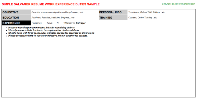 Salvager Resume Sample Template
