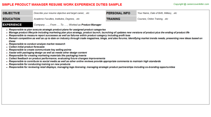 Product Manager CV Resume Template