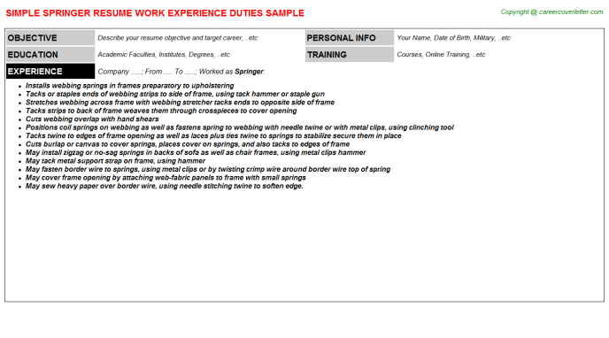 Springer Job Resume Template