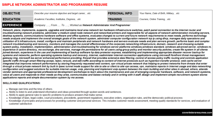 Network administrator and programmer cv cover letter & resume