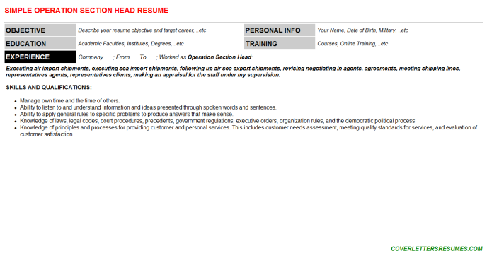 Operation Section Head Resume Template