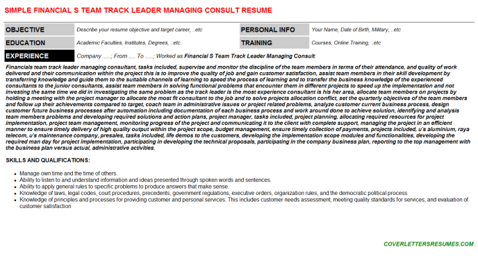 Financial S Team Track Leader Managing Consult Resume Template (#86637)