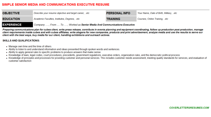 Senior Media And Communications Executive CV Cover Letter ...