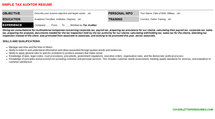 Tax Auditor Resume Template