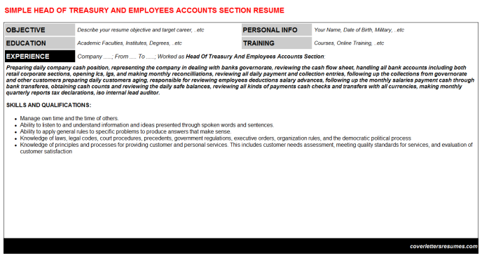Head Of Treasury And Employees Accounts Section Resume Template (#6652)