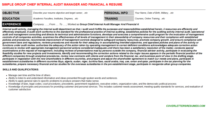 Group Chief Internal Audit Manager And Financial A Resume Template