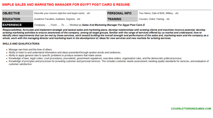 Sales And Marketing Manager For Egypt Post Cairo E Resume Template