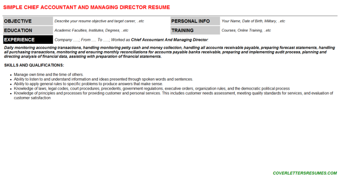 Chief Accountant And Managing Director Resume Template (#4017)