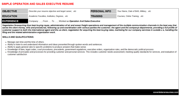 Operation And Sales Executive Resume Template