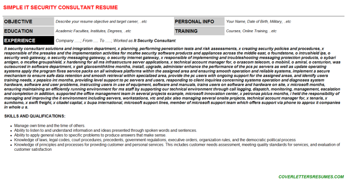 IT Security Consultant CV Cover Letter & Resume Template
