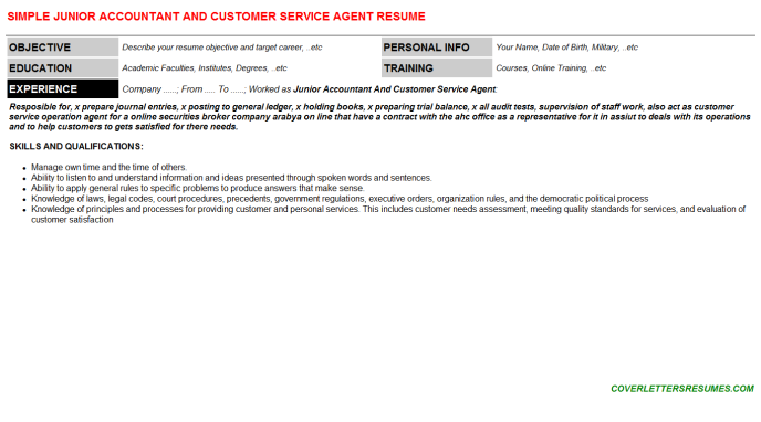 Junior Accountant And Customer Service Agent CV Cover Letter