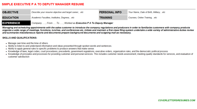 Executive P A To Deputy Manager Resume