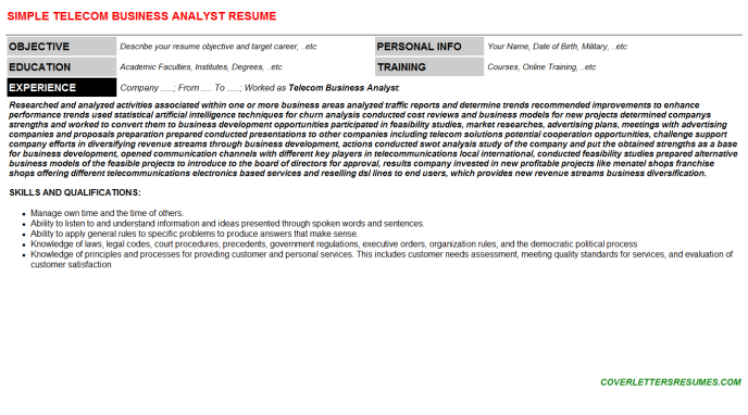 Telecom Business Analyst CV Cover Letter & Resume Template