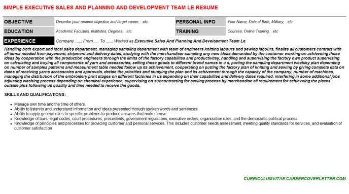 Executive Sales And Planning And Development Team Le Resume Template