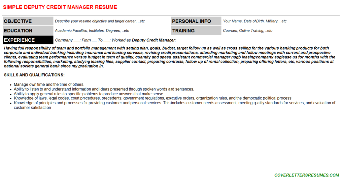 Deputy Credit Manager Resume Template (#72712)