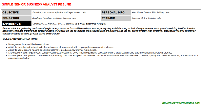 Senior Business Analyst Resume Template