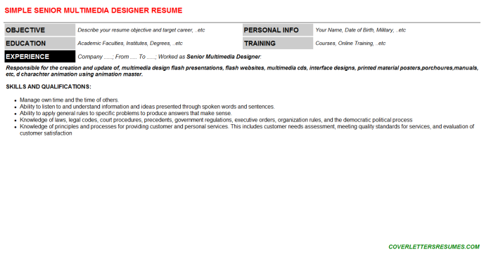 Senior Multimedia Designer Resume Template