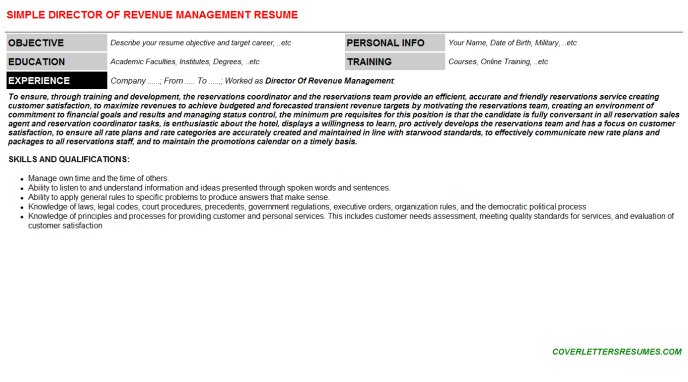 Director Of Revenue Management Resume Template