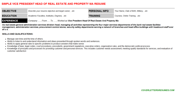 Vice President Head Of Real Estate And Property Ma Resume Template