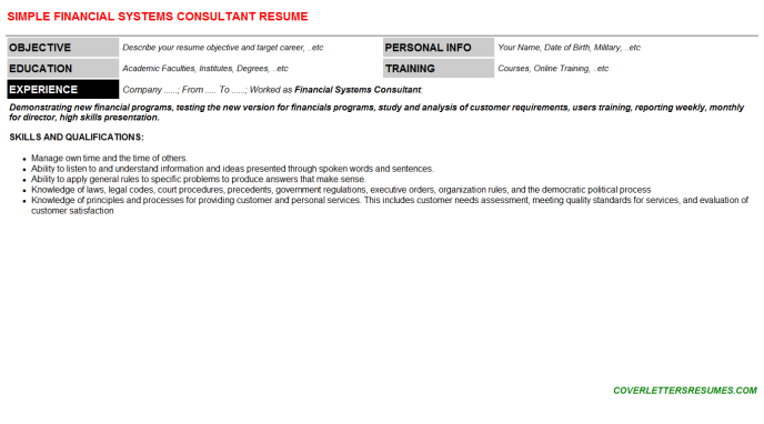 Financial Systems Consultant Resume Template (#2239)