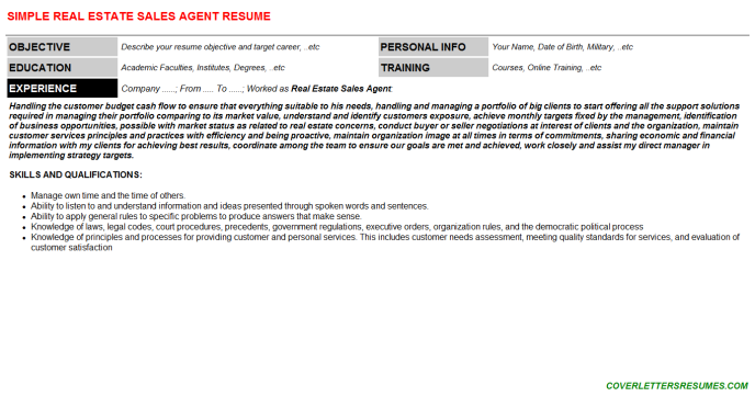Real Estate Sales Agent Resume Template
