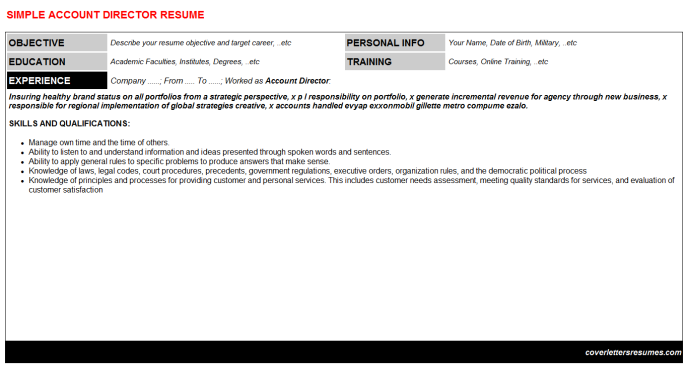 Account Director Resume Template