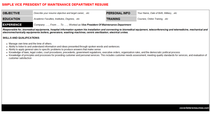 Vice President Of Maintenance Department Resume Template