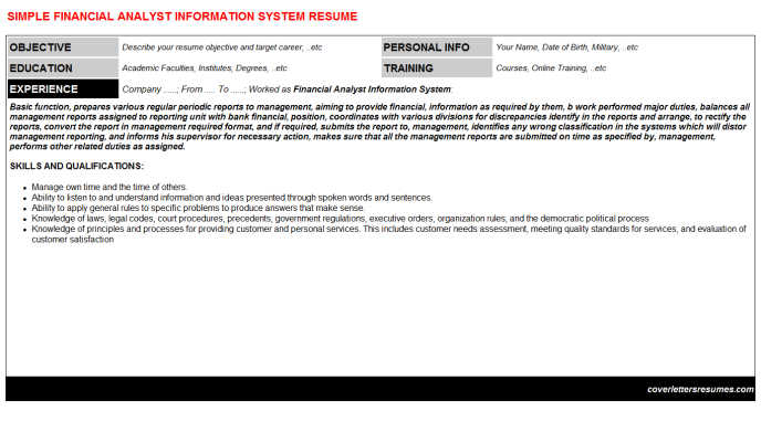 Financial Analyst Information System Resume Template (#33267)