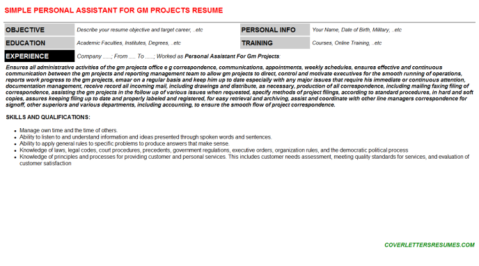 Personal Assistant For Gm Projects Resume Template