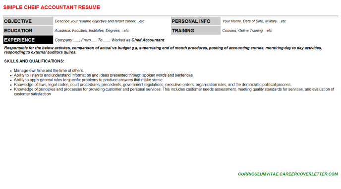 Cheif Accountant Resume Template (#143769)