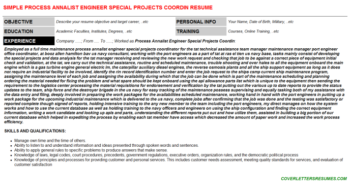 Process Annalist Engineer Special Projects Coordin Resume Template