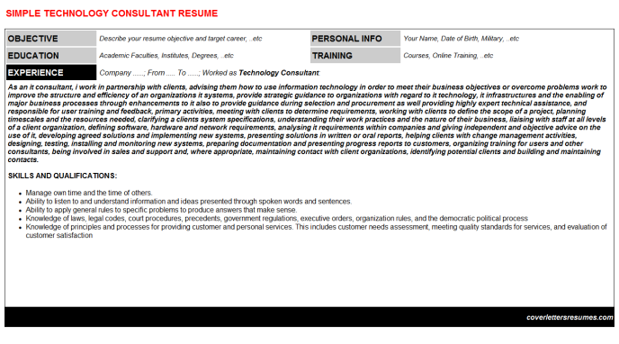 Technology Consultant Resume Template