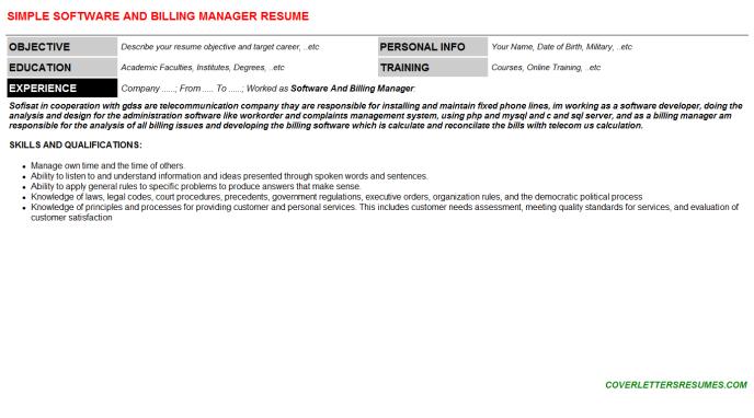 Software And Billing Manager CV Cover Letter & Resume Template