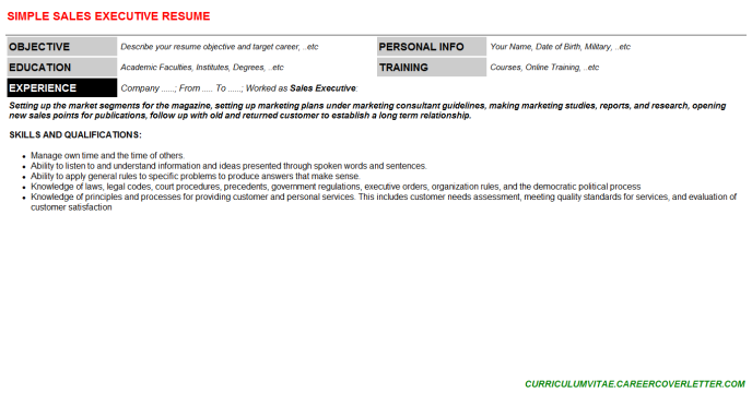 Sales Executive Resume Template (#65834)