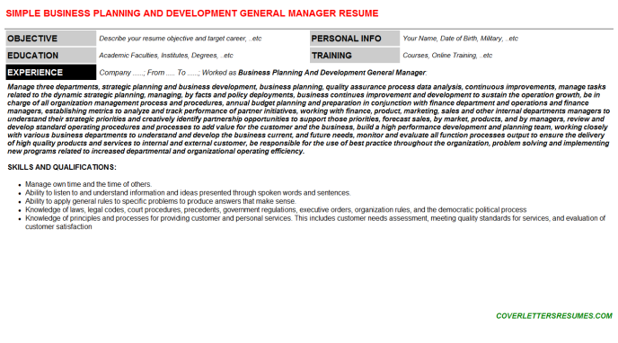 Business Planning And Development General Manager CV Resume