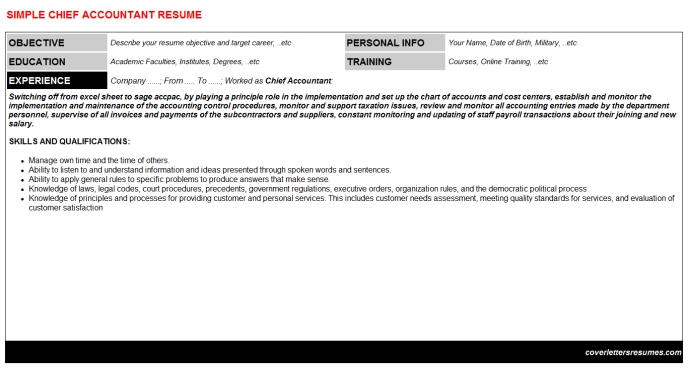 chief accountant cv cover letter & resume