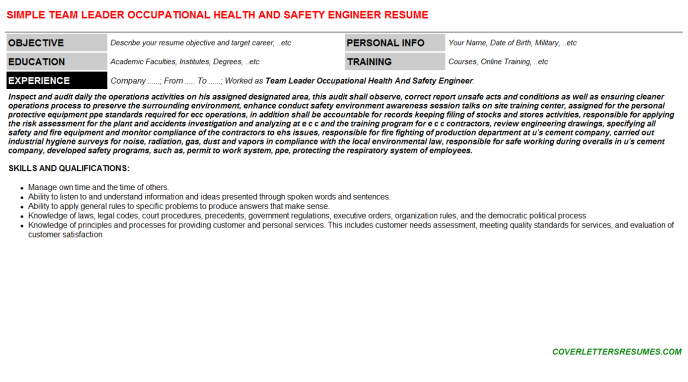 Team Leader Occupational Health And Safety Engineer Resume Template