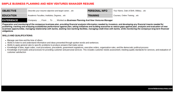 Business Planning And New Ventures Manager CV Resume