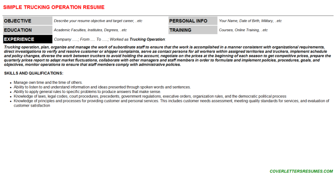 Trucking Operation Resume Template