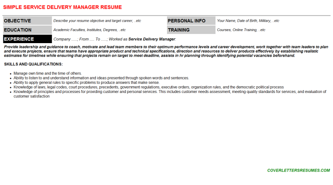 Service Delivery Manager Resume Template