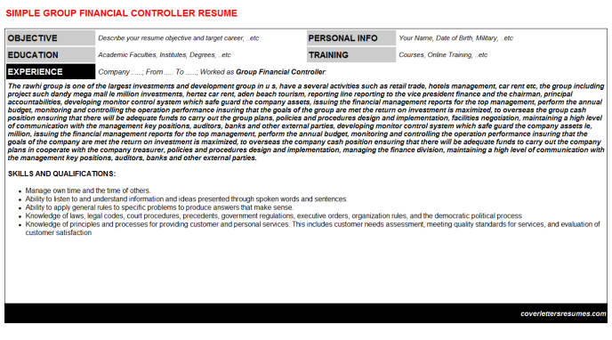 Group Financial Controller Resume Template 369