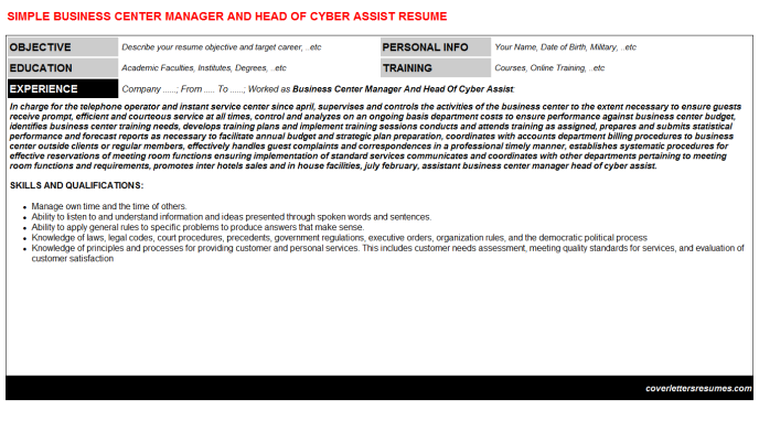Business Center Manager And Head Of Cyber Assist CV Resume
