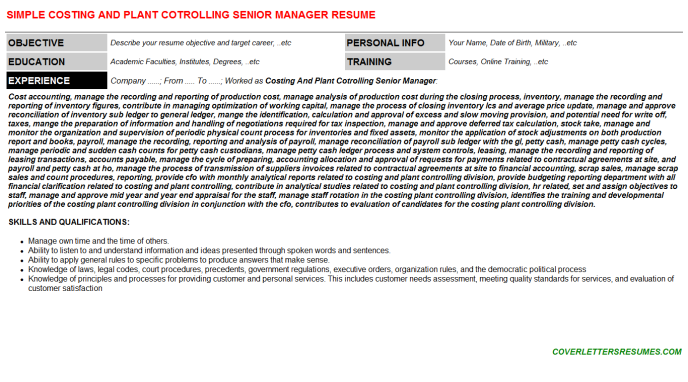 Costing And Plant Cotrolling Senior Manager Resume