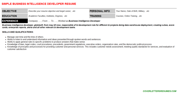 Business Intelligence Developer CV Cover Letter & Resume Template ...