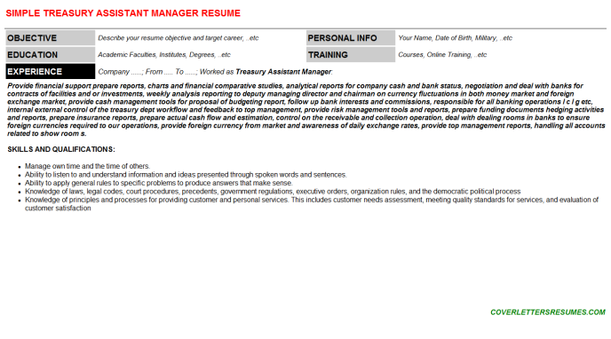 Treasury Assistant Manager Resume Template