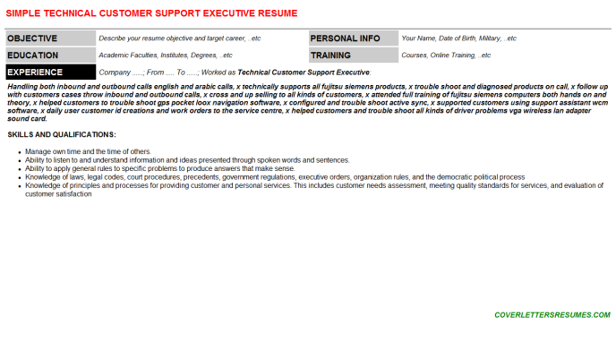 Technical Customer Support Executive Resume Template
