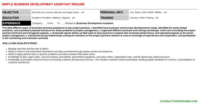 Business Development Assistant CV Cover Letter & Resume ...