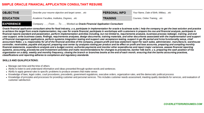 Oracle Financial Application Consultant Resume Template